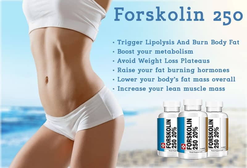 Forskolin 250 - Effective enough to make you lose weight fast?