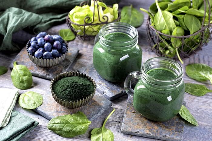 Spirulina Plant-Based Protein Foods the highest amount